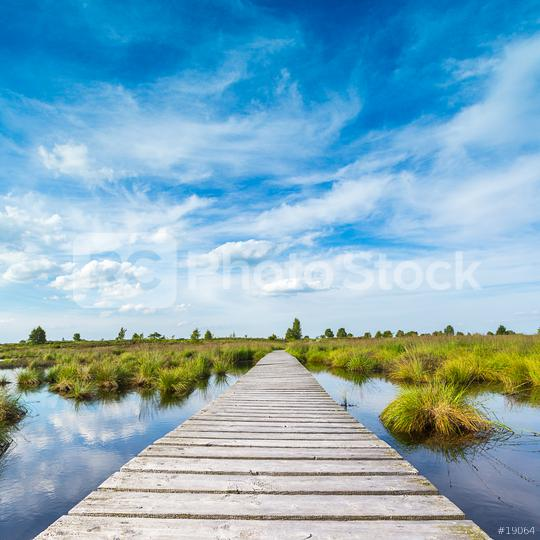 boardwalk over a bog lake with Blue Cloudy Sky  : Stock Photo or Stock Video Download rcfotostock photos, images and assets rcfotostock | RC-Photo-Stock.: