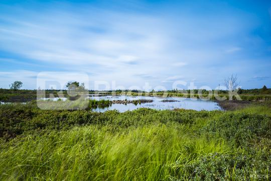 Bog lake in Belgium Veen with cloudy sky  : Stock Photo or Stock Video Download rcfotostock photos, images and assets rcfotostock   RC-Photo-Stock.: