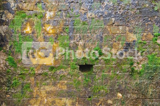 Brick wall with moss growing out  : Stock Photo or Stock Video Download rcfotostock photos, images and assets rcfotostock   RC-Photo-Stock.:
