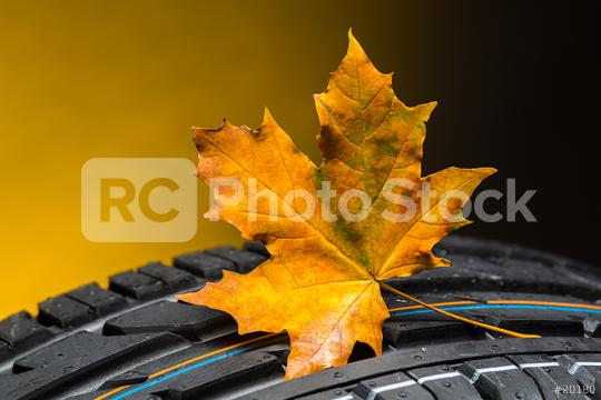 car tires change in the autumn with maple leaf   : Stock Photo or Stock Video Download rcfotostock photos, images and assets rcfotostock   RC-Photo-Stock.: