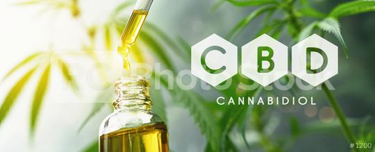 CBD droplet dosing a biological and ecological hemp plant herbal pharmaceutical cbd oil from a jar. Concept of herbal alternative medicine, cbd oil, pharmaceutical industry  : Stock Photo or Stock Video Download rcfotostock photos, images and assets rcfotostock   RC-Photo-Stock.: