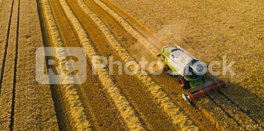 Combine harvesting corn. Aerial drone shot.  : Stock Photo or Stock Video Download rcfotostock photos, images and assets rcfotostock | RC-Photo-Stock.: