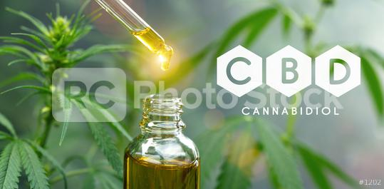 droplet dosing a biological and ecological hemp plant herbal pharmaceutical cbd oil from a jar. Concept of herbal alternative medicine, cbd oil, pharmaceutical industry  : Stock Photo or Stock Video Download rcfotostock photos, images and assets rcfotostock | RC-Photo-Stock.: