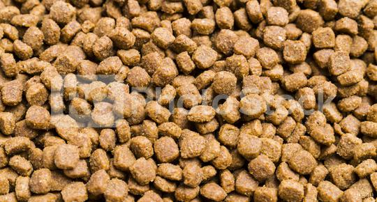 Dry cat food used as background  : Stock Photo or Stock Video Download rcfotostock photos, images and assets rcfotostock | RC-Photo-Stock.: