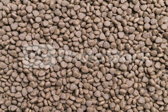 Dry food for dog and cat background  : Stock Photo or Stock Video Download rcfotostock photos, images and assets rcfotostock   RC-Photo-Stock.: