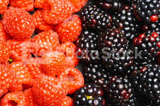 Fresh blackberrys and raspberrys background or backdrop. Vegan and vegetarian concept. Macro texture of blackberry and raspberry berries. Summer healthy food.   : Stock Photo or Stock Video Download rcfotostock photos, images and assets rcfotostock | RC-Photo-Stock.: