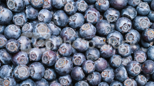 Fresh blueberries background or backdrop. Vegan and vegetarian concept. Macro texture of blueberry berries. Summer healthy food.   : Stock Photo or Stock Video Download rcfotostock photos, images and assets rcfotostock | RC-Photo-Stock.: