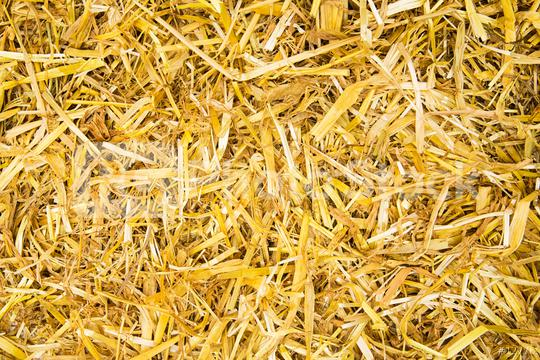 golden straw background  : Stock Photo or Stock Video Download rcfotostock photos, images and assets rcfotostock   RC-Photo-Stock.: