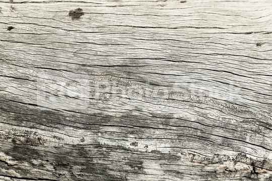 gray wood with cracks texture background  : Stock Photo or Stock Video Download rcfotostock photos, images and assets rcfotostock   RC-Photo-Stock.:
