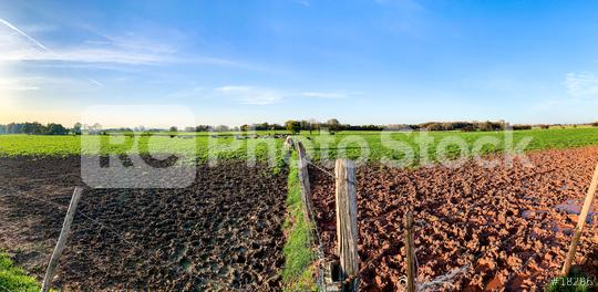 Green field with trees and blue sky. Panoramic view to grass, trees and flowers on the hill on sunny spring day  : Stock Photo or Stock Video Download rcfotostock photos, images and assets rcfotostock   RC-Photo-Stock.: