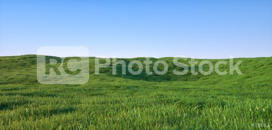 Green grass field landscape - 3D Rendering  : Stock Photo or Stock Video Download rcfotostock photos, images and assets rcfotostock | RC-Photo-Stock.: