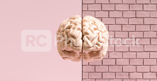 Human brain against a brick wall, concept image for feminism and woman rights  : Stock Photo or Stock Video Download rcfotostock photos, images and assets rcfotostock | RC-Photo-Stock.: