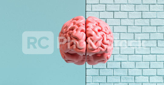 Human brain against a wall, concept image for feminism and woman rights  : Stock Photo or Stock Video Download rcfotostock photos, images and assets rcfotostock | RC-Photo-Stock.: