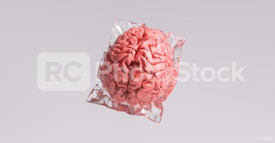 Human brain wrapped in shrink wrap as a plastic waste and medical concept image  : Stock Photo or Stock Video Download rcfotostock photos, images and assets rcfotostock | RC-Photo-Stock.: