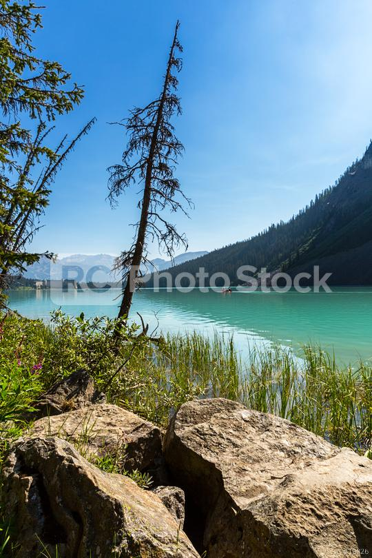 Lake Louise Mountain in summer at banff canada  : Stock Photo or Stock Video Download rcfotostock photos, images and assets rcfotostock | RC-Photo-Stock.: