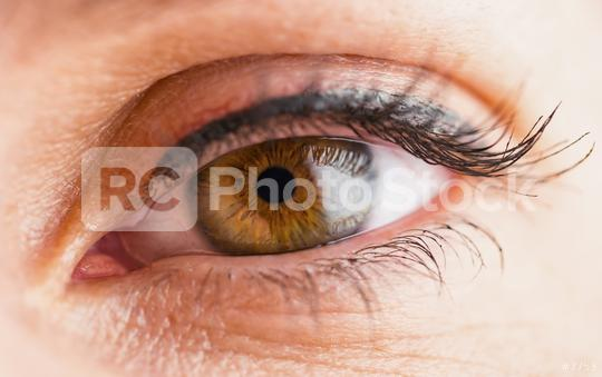 Macro image of woman eye  : Stock Photo or Stock Video Download rcfotostock photos, images and assets rcfotostock   RC-Photo-Stock.: