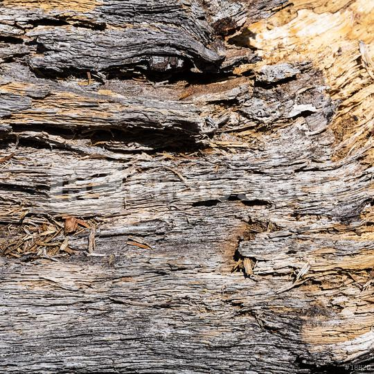 old damage wood with cracks   : Stock Photo or Stock Video Download rcfotostock photos, images and assets rcfotostock | RC-Photo-Stock.: