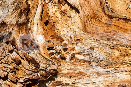 old wood structure texture  : Stock Photo or Stock Video Download rcfotostock photos, images and assets rcfotostock | RC-Photo-Stock.: