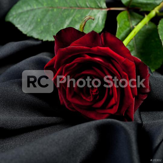 red rose on a background of black satin  : Stock Photo or Stock Video Download rcfotostock photos, images and assets rcfotostock | RC-Photo-Stock.: