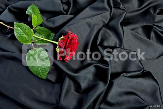 smooth black satin and red rose  : Stock Photo or Stock Video Download rcfotostock photos, images and assets rcfotostock | RC-Photo-Stock.: