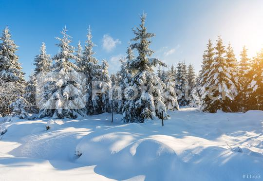 snowy winter landscape  : Stock Photo or Stock Video Download rcfotostock photos, images and assets rcfotostock   RC-Photo-Stock.:
