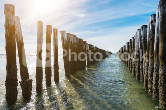 Timber Piles  : Stock Photo or Stock Video Download rcfotostock photos, images and assets rcfotostock | RC-Photo-Stock.: