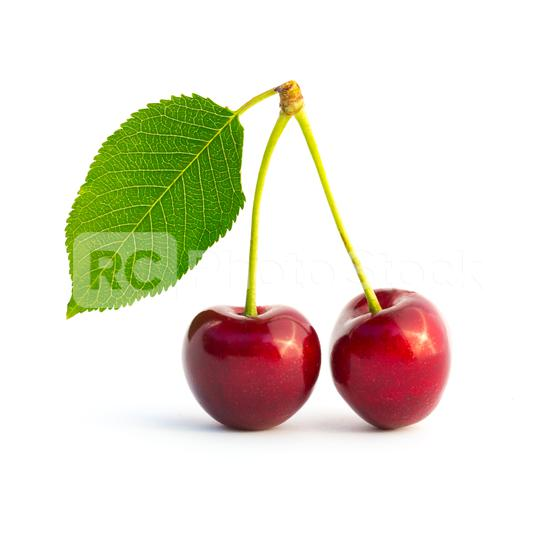 twin cherries on white background  : Stock Photo or Stock Video Download rcfotostock photos, images and assets rcfotostock   RC-Photo-Stock.: