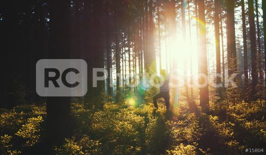 Young man in silent forrest with sunlight  : Stock Photo or Stock Video Download rcfotostock photos, images and assets rcfotostock | RC-Photo-Stock.: